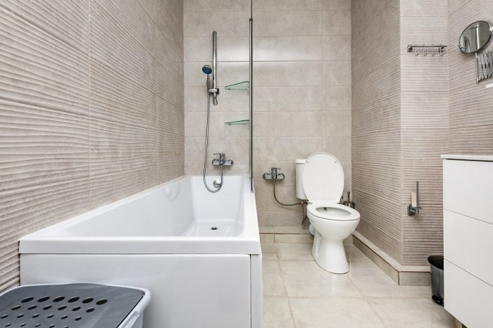 How to Clean Toilet Tank Mold